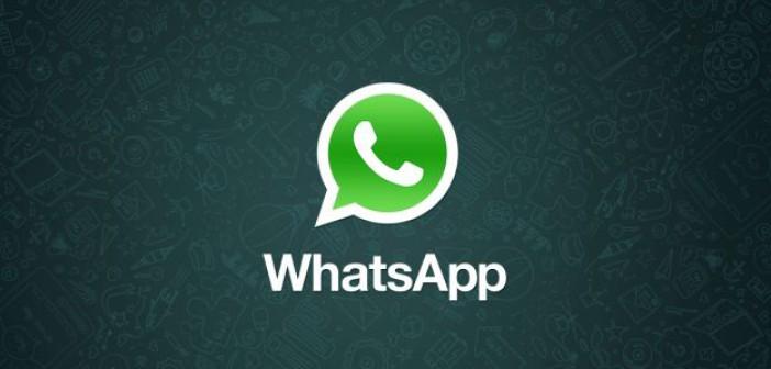 Il servizio informativo via WhatsApp del Comune di Empoli a quota 6500 iscritti