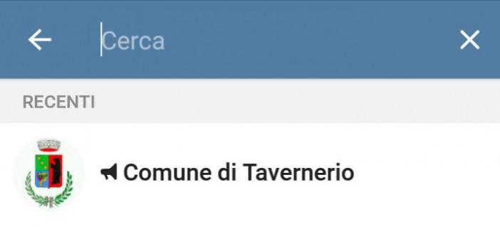 telegram tavernerio
