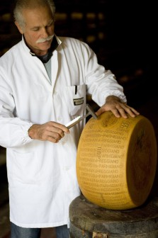 ParmigianoReggiano5